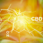 Medical Applications Of Cbd Goes Mainstream